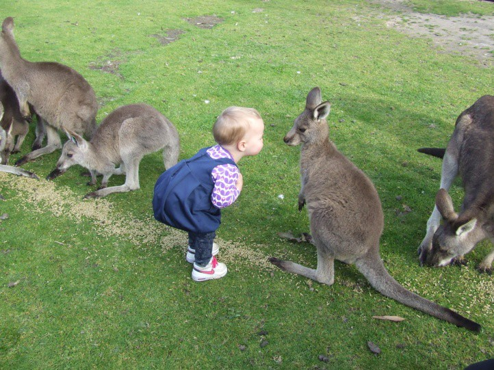 Family Fun At Gumbuya Park Very Special Kids